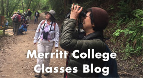 Link button for Merritt College Classes Blog